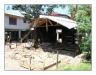 2005_Honduras_480