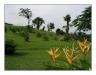 2005_Honduras_787