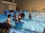 2018-Bílina bazén